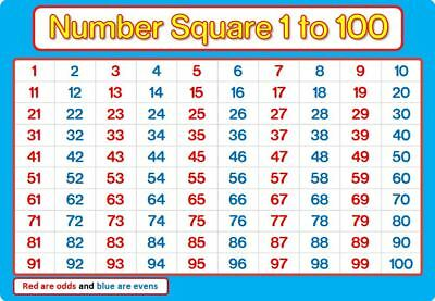 A4 NUMBER SQUARE 1-100 Laminated BLUE and PINK Maths Chart Poster Education