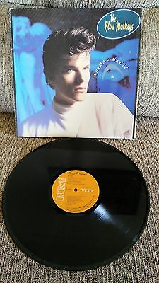 "The Blow Monkeys Animal Magic LP Vinyl 12 "" 1986 Original Spanish Press G VG"