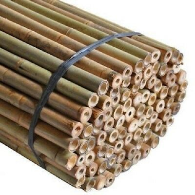 Strong Heavy Duty Professional Bamboo New Plant Support Garden Canes 2ft to 7ft