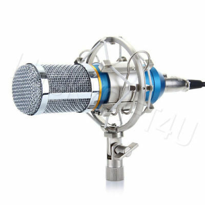 Professional Condenser Mic Microphone Broadcasting Studio Recording +Shock Mount
