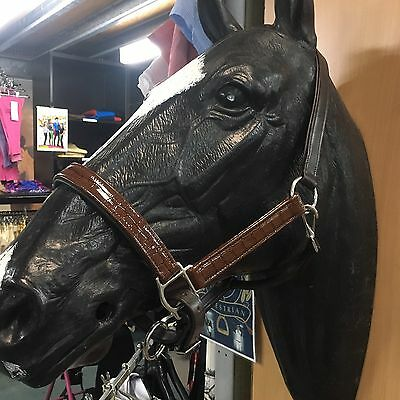 Brown Padded Soft Leather Horse Halter With Crocodile Detail ~Full Size LAST 3 !