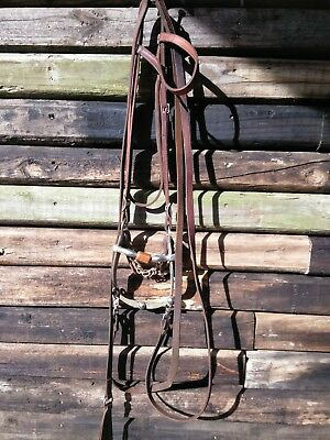 Champion Turf Bridle Copper Show Bit Romal Reins Leather Reining Working Cow Rig