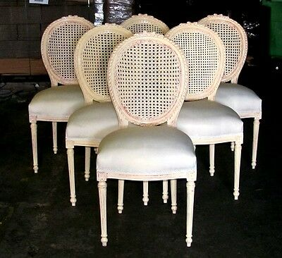 Six Stunning Creamy Painted French Louis XVI Cane Caned Dining Chairs