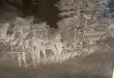 1890's Dr. Baker's Medicines Horse Drawn Wagon Dry Plate Negative Perry Iowa