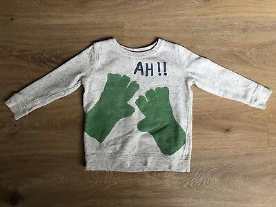 Boys SEED Jumper (size 2-3)