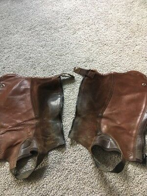 Ariat Concord Half Chaps Brown Size XS