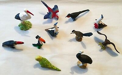 Parrot and Exotic Bird Set - Toys - cake toppers - lovely set!