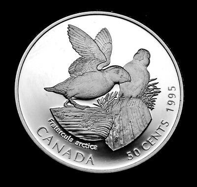 Atlantic Puffin 50¢ ulra cameo silver coin 1995:  Canada on the Wing