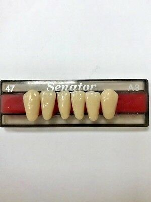 Senator Acrylic Resin Denture / False teeth Lower anterior All shades and moulds