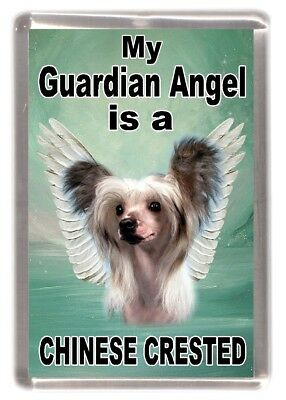 "Chinese Crested Dog Fridge Magnet ""My Guardian Angel is a ......"" by Starprint"