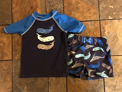Toddler Boys 2t  18 Month Swim Outfit