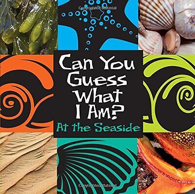 At the Seaside (Can You Guess What I Am?) New Hardcover Book J. P. Percy