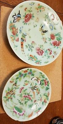 Two Antique 19C Chinese Tongzhi Famille Rose Hand Enamelled Celadon Plates