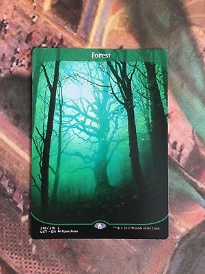 Magic the Gathering Forest Full Art Unstable
