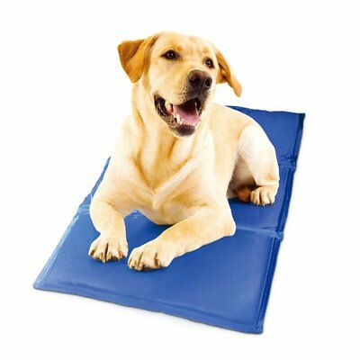 Pet Dog Cat Cooling Mat Gel Pad Bed Summer Heat Relief Non Toxic Cushion 50x40cm