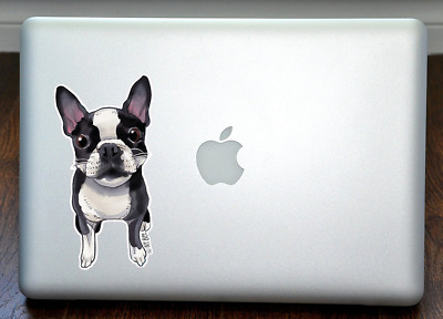 FREE SHIPPING ASAP NEW Boston Terrier Full Color Large Decal by Ivy Bee