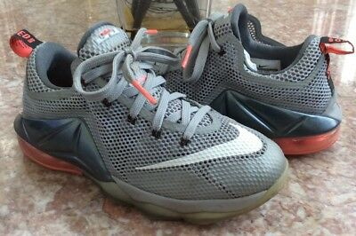 0d6edf127ea Nike Lebron James XII Low Youth Kids  Gray Basketball Shoes Size 5Y  744547-