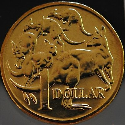 1 x 2006 Australian One Dollar $1 Mob of Roos MOR UNC Coin ex Security Roll