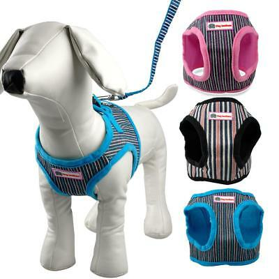 Cute Puppy Small Dog Harness and Walking Leads Set 4 Sizes Pet Winter Vest