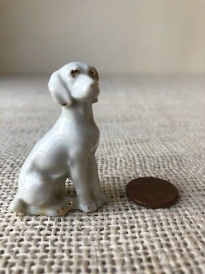 Vitg Porcelain Labrador Retriever White Dog Miniature Germany Gold Eyes Figurine