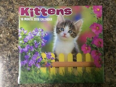 2018 Kittens Cats 16 Month Wall Calendar Paper Craft