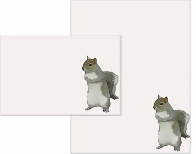 Cute Squirrel Letter Writing Paper and Envelopes Stationary Set, Gift Set