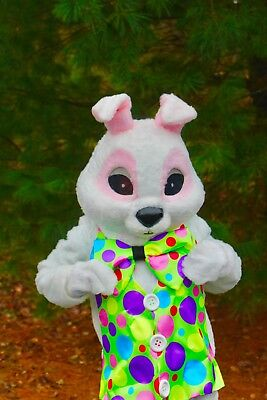 Commercial  Rabbit Mascot  Costume Rubies Adult Easter Bunny Rubie's Peter