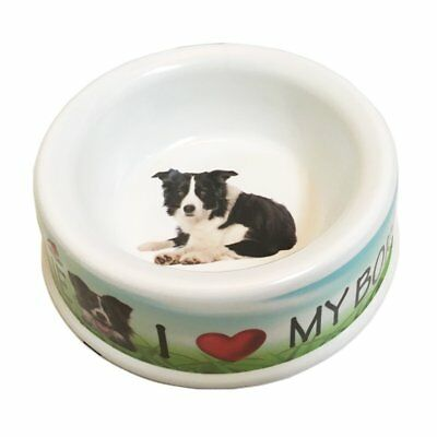 I Love My Border Collie Dog Bowl, 10-inch