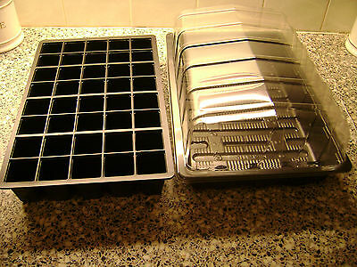3 FULL SIZE SEED TRAYS WITH OR WITHOUT HOLES 3 X 24 CELL 3  PROP TOPS
