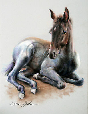 TENNESSEE WALKING HORSE FOAL ART PRINT Pastel by Maureen Shelleau SIGNED!