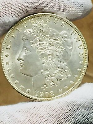 1902-0 $1 Morgan Silver Dollar