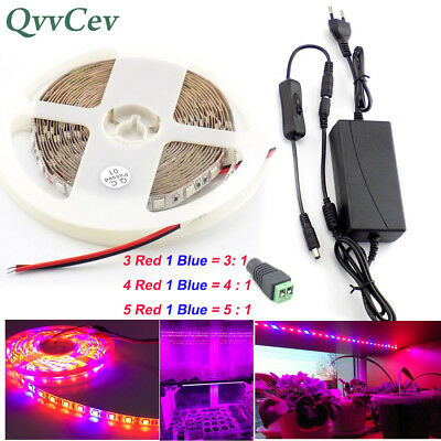 1/2/3/5M 12V LED Strip light Plant Grow for indoor vegetables Greenhouse Hydro