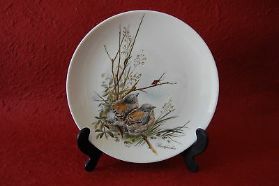 Kaiser Wilhelm Germany Decorative Plate 6in Buchfinken Baby Birds