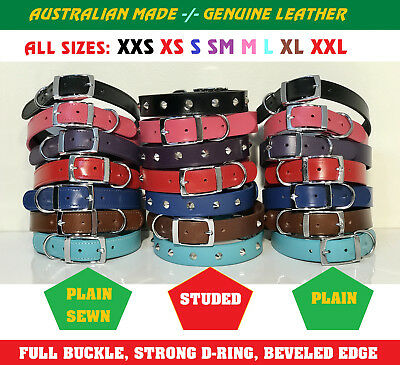 Genuine Leather Dog Collar High Quality Duluxe All Designs All Sizes XXS To XXL