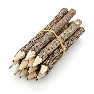 Wooden Tree Rustic Twig Pencils Camping Lumberjack Party Supplies 5 Inches Long