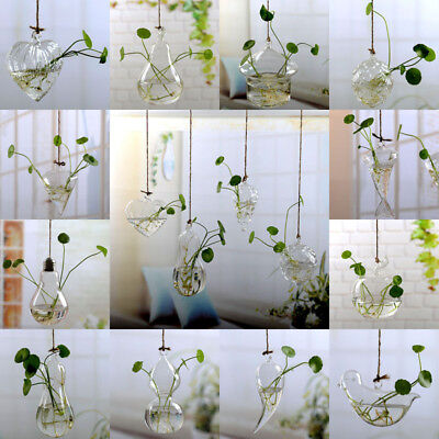 Wall Hanging Light Bulb Glassvase Flower Plant Terrarium Container