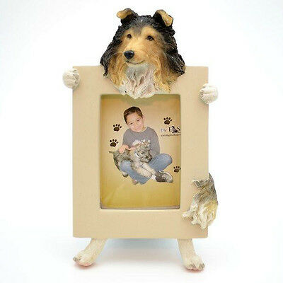 Sheltie Frame Dog Picture Photo Frame