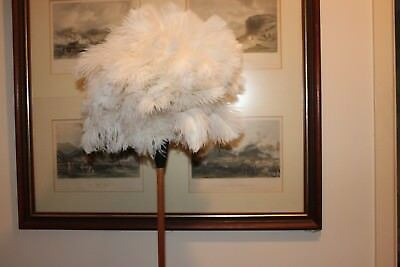 One (1) soft white ostrich feather duster 65cm overall stained handle1st grade