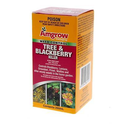 Herbicide Tree/Blackberry Killer 250ml With Triclopyr Concentrated Formula