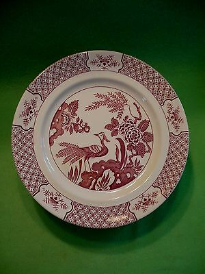 Set of 8 Wood & Sons England RED  ' YUAN PEACOCK & floral  '  dinner plate 10.25