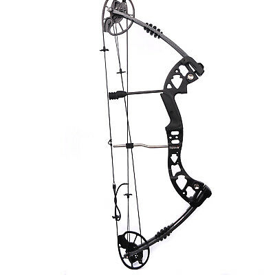 M125 30 - 70 Ibs Black Compound Hunting  Blade Bow For Archery Target Shooting