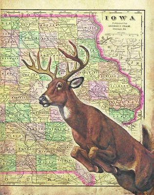 Whitetail Deer Hunting Vintage Iowa State Map Art Print Antlers Bow Wall Decor