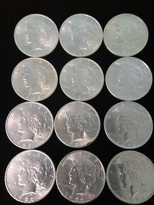 Lot of --12--Peace Silver Dollar asst.Dates & Condition