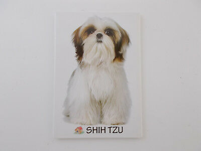 Small Rectangular Dog Breed Fridge Magnet Shin Tzu Dog Breed Specific,Pet