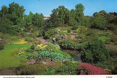 Postcard   Scotland   Edinburgh royal botanical gardens  posted  Dixon