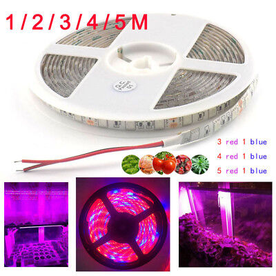 1M 5050 LED Strip grow light For Hydro Plant Garden Flowers Growing Lights Lamps