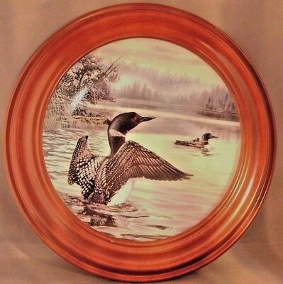 """Birds of the North"", Morning Light: Common Loons, ,1991,Framed Collectors Plate"