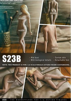 "TBLeague PHICEN 1/6 Scale Female 12in 12"" Body S17B S19B S21B S23B #Suntan"