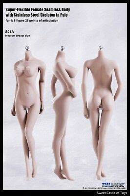 1/6 TBLeague Female Seamless Body Pale Mid Bust S01A w/Steel Skeleton Old Phicen