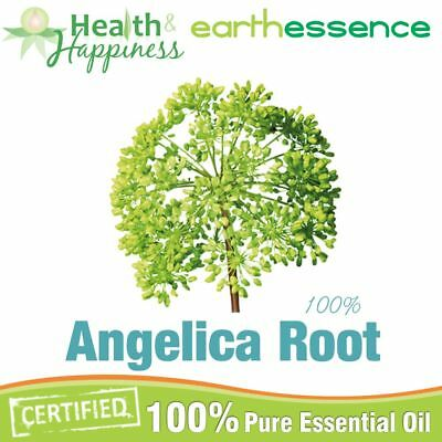 ANGELICA ROOT ~ earthessence Certified 100% Pure Essential Oil ~ Aromatherapy